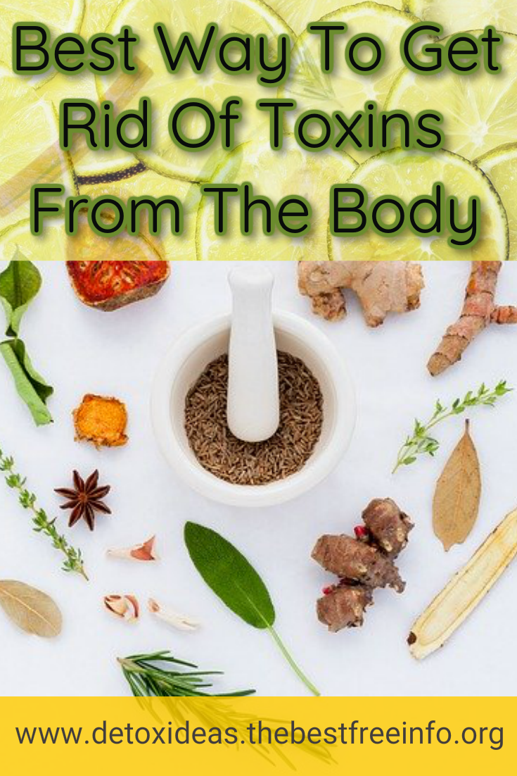 Best Way To Detox Your Body Of Toxins